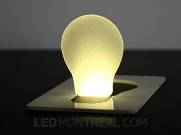 Pocket LED Light