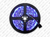 RGB IP20 5 meter LED Strip (strip only)