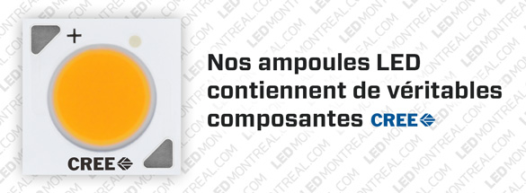 Ampoule COB LED PAR20 de 8 watts Dimmable