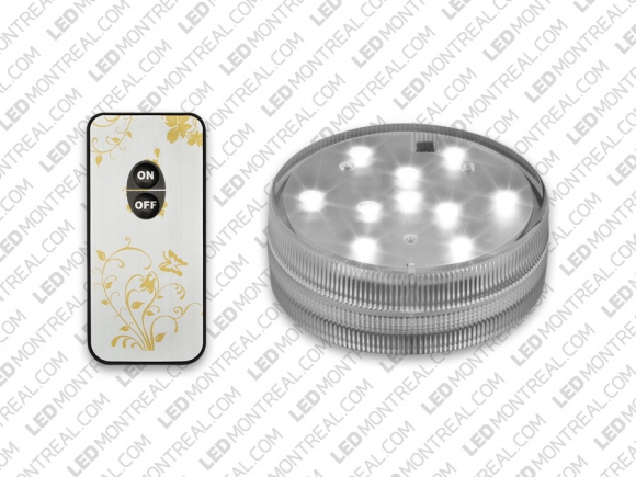 Submersible Cool White Puck Light