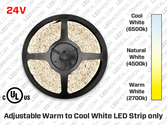 24V iP20 3014 Cool or Warm White LED Strip - 240 LED/m Double Chip