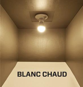 Quelle ampoule LED choisir, Blanc chaud ou Blanc froid?