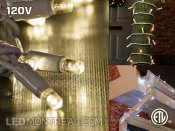 120V Indoor/Outdoor 10m+ LED Garland